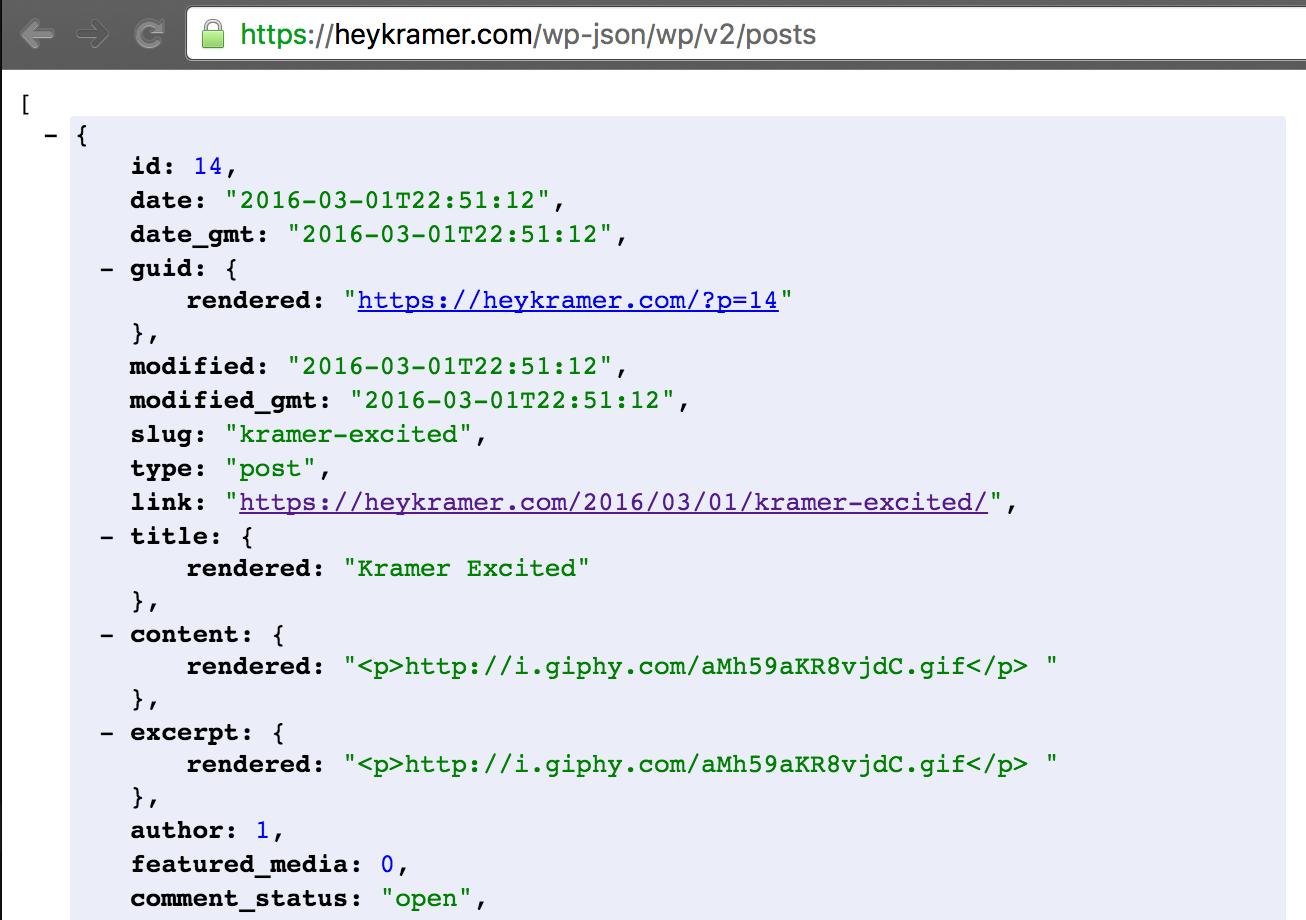 Andy Brudtkuhl   Slack Slash Command With WordPress REST API